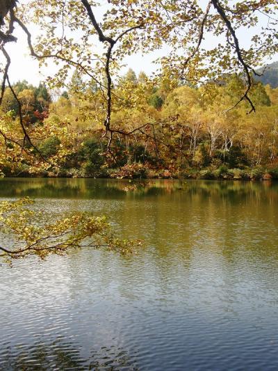 赤や黄に色づいた志賀高原を歩く・・・③自然探勝コースを楽しむ