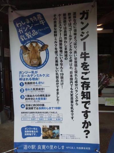 長岡市道の駅わしま もてなし家 イチオシのガンジーソフトを食べました。