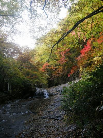 福島県を応援しようバスハイク・・・①安達太良山五葉松平とあだたら渓谷自然遊歩道を歩く