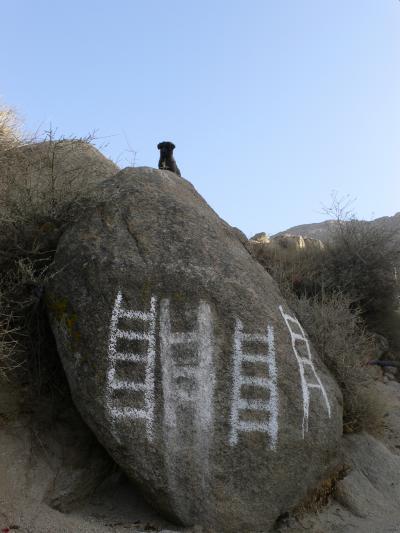 冬のチベット巡礼6