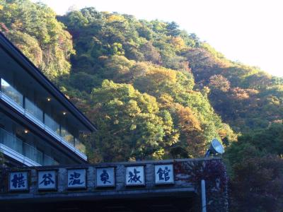 横谷温泉峡の紅葉と滝めぐり。見頃です!!