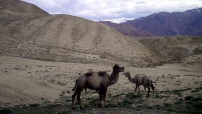 ユーラシア 西へ34: カシュガル⇒オシュ 「4000mサリタシュ峠」 を越えて