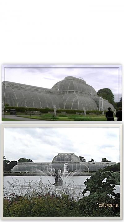 還暦過ぎのUKへの留学の備忘録「Kew Gerdens」春に行ってバラ園を満喫したかった~