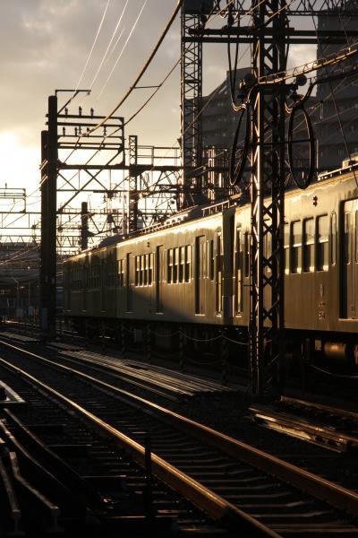 小さな旅 わが街小手指 霜月の朝 My town Kotesashi/A morning in November