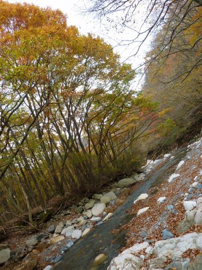 紅葉もクライマックス 鈴鹿上高地でまったりと そしてお鍋も♪