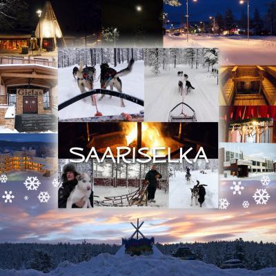 晩秋のフィンランドの旅 5泊7日 (サーリセリカ、犬ぞり体験、宿泊は)サンタズ ホテル トゥントゥリ) 2012.11 Part2