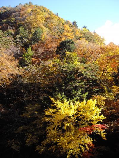 ○中津峡へ紅葉狩り