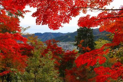 兵庫県宍粟市の紅葉めぐりのドライブ