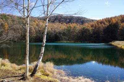 横谷渓谷から御射鹿池・奥蓼科温泉へ ~何とか間に合ったぎりぎりの紅葉狩りに、最後は温泉でまったり~