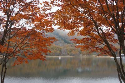 地元民の友人プレゼンツ 2012秋の長野 週末旅~蓼科のメープル紅葉、牧場もちょっとだけ 編