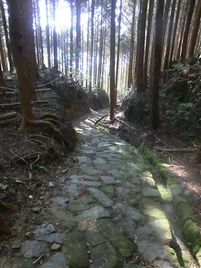 男一人 秋の熊野古道を歩く ①近露王子~滝尻王子