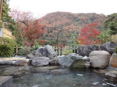富山庄川温泉 「ゆめつづり」 宿泊
