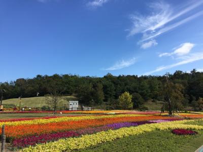 花いっぱい!「花と緑の夢あいち」愛・地球博記念公園へ