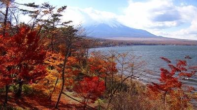 山中湖 夕焼けの渚付近の紅葉は終わりごろでした。