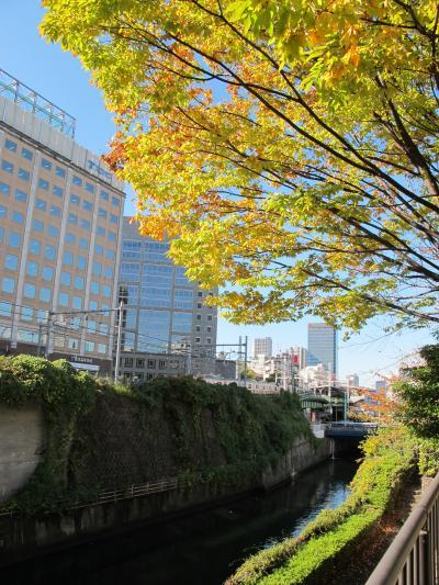 御茶ノ水渓谷の秋景色