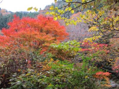 花貫―袋田ー竜神、紅葉狩りの日帰りツアー(3)花園花貫の渓谷を下る。