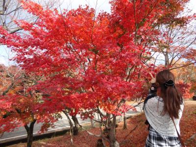 母と娘、小豆島2人旅*上着を忘れ、常に小走りの1日目(´д`)