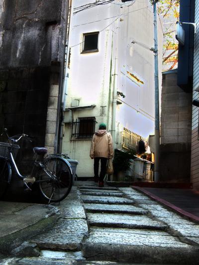 階段だらけの路地が、ぐるぐると・・・迷路のような窪地の町 ~新宿区・荒木町~