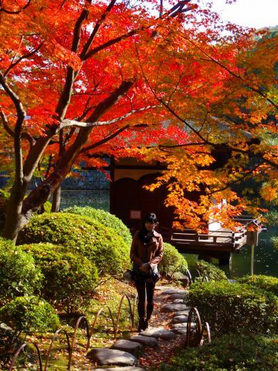和歌山城の紅葉渓庭園(もみじだにていえん):西の丸庭園とも呼ばれており、そこの紅葉と他、和歌山城内の紅葉をご紹介します。