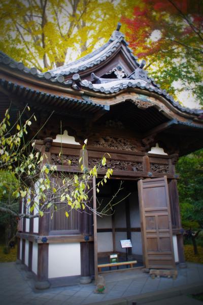 古建築と錦秋の絶景「横浜三溪園」