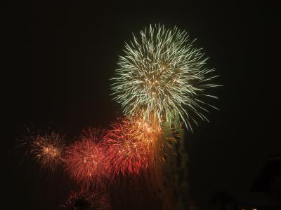 2012.07.22府中競馬場花火
