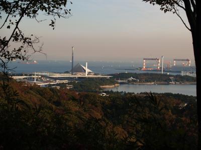 横浜称名寺市民の森(横浜市金沢区)