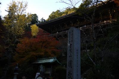 書写山・圓教寺の紅葉まつり