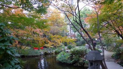 直ぐ近所にあった、「池泉回遊式 日本庭園 楽水園」プチ散策(2012年11月)