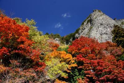 秋色に染まる小豆島