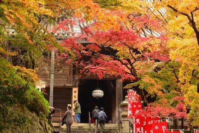 2012年長谷寺の紅葉