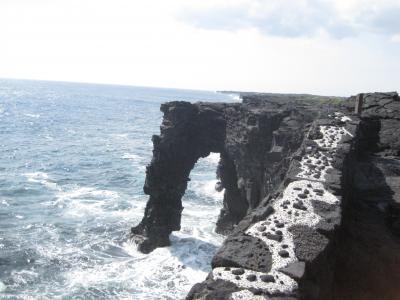 ハワイ島 溶岩台地を堪能