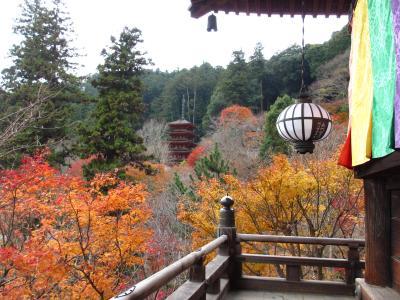 2012年 奈良・紅葉 室生寺・長谷寺・談山神社