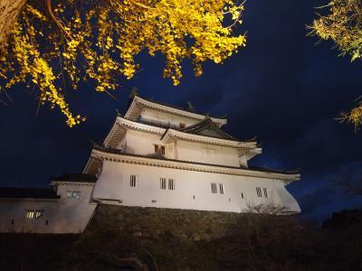 ピーチに乗って♪初めまして♪和歌山城と和歌山ラーメン