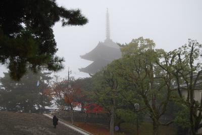 晩秋の奈良での同窓会①奈良へ向かう