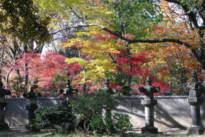 上野公園に日本の秋を見る。  2012