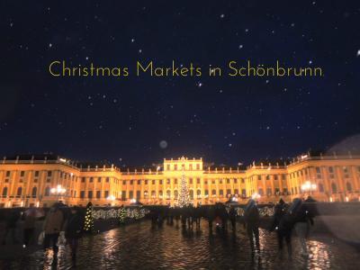ウィーンのクリスマスマーケット 2012(シェーンブルン宮殿)