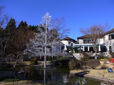 まぶしい!箱根ガラスの森美術館「クリスタルツリー」