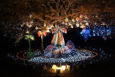 花の都公園のライトアップ2012