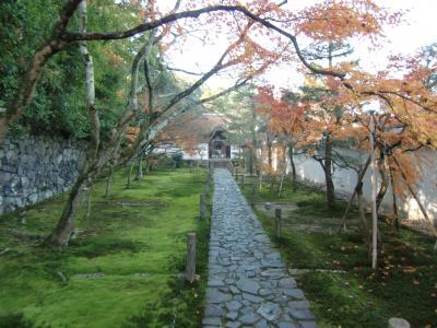 冬休み2012 in Japan 4日目(紅葉の一休寺)