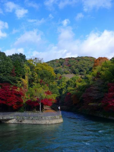 2012年11~12月 母と娘の京都散り紅葉めぐり(第2日目)前編 宇治川ライン巡りの巻