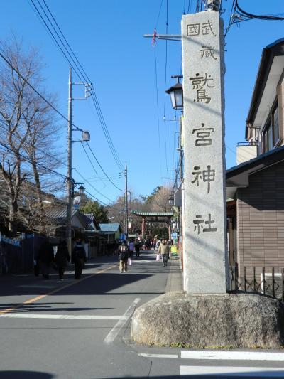 新年の鷲宮神社 2013