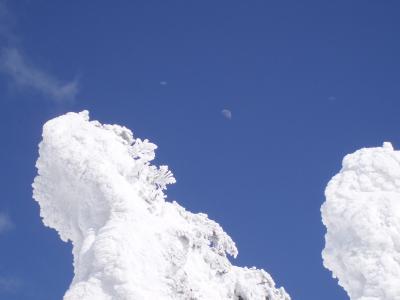 阿仁・森吉山の樹氷原