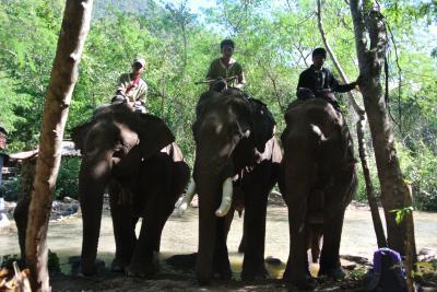 ミャンマー4歳子連れ旅(3) カローで象に乗る