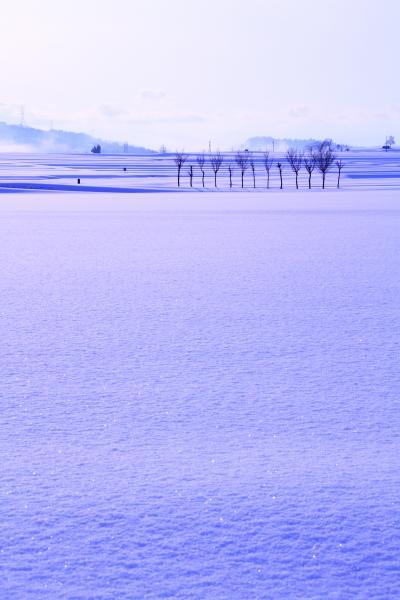 2013・冬 新潟の旅 ◆ 4日目~5日目 旧中島浄水場と出雲崎