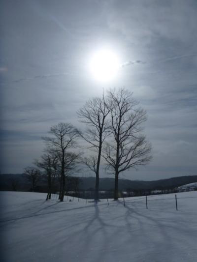 真っ白な世界を駆け巡れ~! スノーシューでハイク IN 飛騨牧場  2013 1月6日