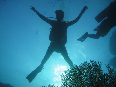 今年もシミラン・ダイビングクルーズ行っちゃいました~(海の中編)