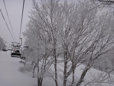 〈女子旅♪〉手ぶらで格安日帰りスキーツアー@長野/峰の原高原スキー場(2013・2)