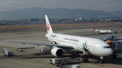 復路で久し振りに利用した《大阪伊丹空港》散策(2013年1月)