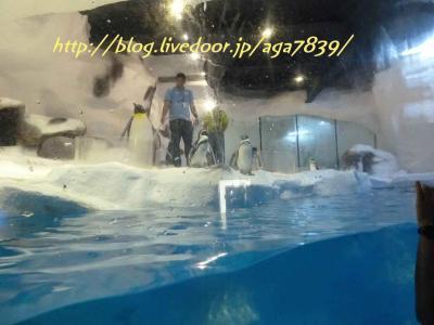2012年GW 11回目のセブ島 #19 マニラ編 マニラオーシャンパーク逝っちゃいまぁ・・・・・す 何っ! フィリピンでペンギンが見れるってか!