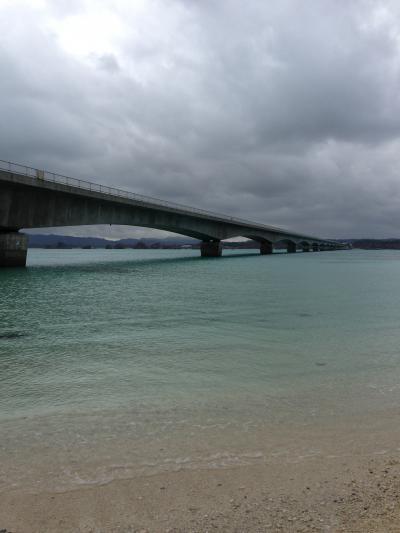 やっと沖縄本島北部観光に行った/観光ツアーとDFS編